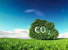 groene wolk CO2